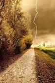 Tempesta d'autunno nel parco — Foto Stock