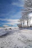 Street with snow — Zdjęcie stockowe