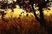 Zonsondergang in platteland — Stockfoto