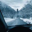 Driving on snowy road — Stock Photo #61365115