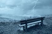 Bench in the park — ストック写真