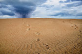 Footprint over the sand — Stock Photo