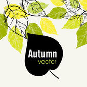 Autumn Leaf Background — Stock Vector