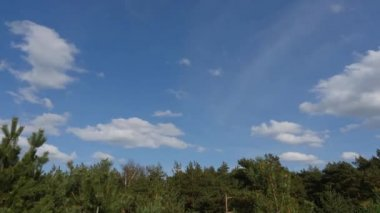 Clouds deformation under green forest time lapse — Stock Video