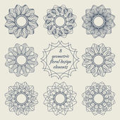 Collection of geometric floral design elements — Stock Vector