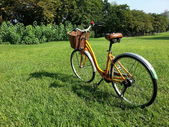 Bicycle in park — Stock Photo