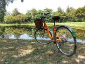 Bicycle in park H.D.R. — Fotografia Stock