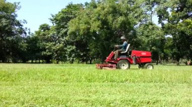 Bangkok - October 18 : Unidentified worker and unidentified  machine cutting grass at park on October 18, 2014 in Bangkok Thailand. — Stock Video