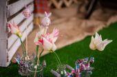 Decoración del conejito de pascua — Foto de Stock