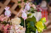 Easter Bunnys — Stock Photo