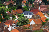 Bird-fly overview to small village in Alsace — Stock Photo