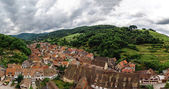 Wide panoramic bird-fly view. Alsace hills. — Stock Photo