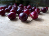 Winter card - cranberry on a  board — Stock Photo