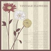Vintage elegant flower postcard — Stock Vector