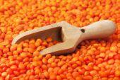 水平方向のテーブルの上の木のスプーン マクロで赤レンズ豆を乾燥します。 — ストック写真