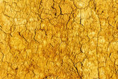 Textured background of dry cracked earth surface. drought in sum — Foto de Stock