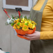 Florist at work holding composition of cut flowers — Stock Photo #58580493