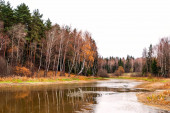 Autumn landscape with forest and lake — Stock Photo