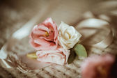 Wedding  roses on textile background — Foto Stock