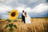 Sun flower and wedding couple — Stock Photo