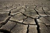 Dry cracked earth background, clay desert texture — Foto Stock