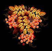 Bunches of rowan berries — Stock Vector