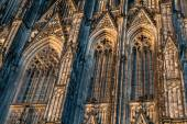 Cologne Cathedral close up — Stock Photo