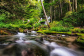 Mountain Creek and Waterfall — Stock Photo