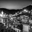 Riomaggiore village at night black and white — Stock Photo #66056277