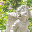 Fairy Statue in the garden with flower — Stock Photo #52270297