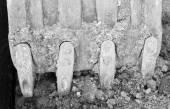 Escavadeira escava um buraco no chão — Foto Stock