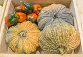 Pumpkin and pepper harvested products on wooden box — Stock Photo