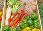 Produkty rolnictwa, zebranych na desek — Zdjęcie stockowe