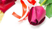 Red rose on white background, Valentines Day background — Fotografia Stock