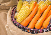 Agriculture harvested corn and carrot in basket — Stock Photo