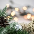 Christmas decoration with pine cones, Christmas ornaments and fir on bokeh, blurred background — Stock Photo #60371119