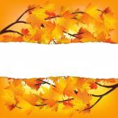 Autumn tree branches — Stock Vector