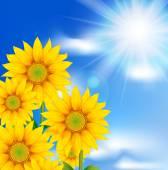 Ayçiçeği gökyüzü — Stok Vektör