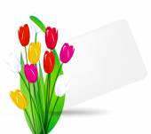 Bouquet of tulips on a background sheet — Stock Vector