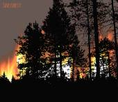 Black silhouettes of trees on the background of forest fire. Save forest concept. Vector illustration. — Vecteur
