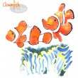 Hand-painted watercolor illustration of seafishes - Clownfish or anemonefish - swimming near actinia (sea anemones). Vectorized watercolor. — Stock Vector #60680343