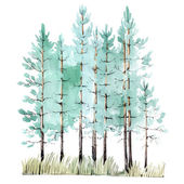 Watercolor painting of pine-tree wood — Stock Vector