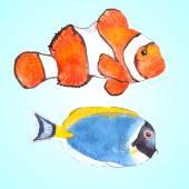 Clown fisk och pulver tang — Stockvektor