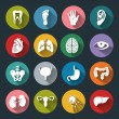 Set of vector Medical Icons with human organs in flat style — Stock Vector #71063375