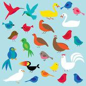Birds clip art — Stok Vektör