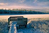 Sunlit frozen viewpoint — Stock Photo