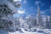 Idilliaca invernale — Foto Stock