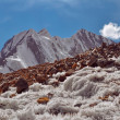 Ice crystals in Tajikistan — Stock Photo #63371741