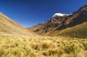 Peruvian Andes — Stock Photo