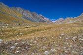 Ala Archa in Kyrgyzstan — Stock Photo
